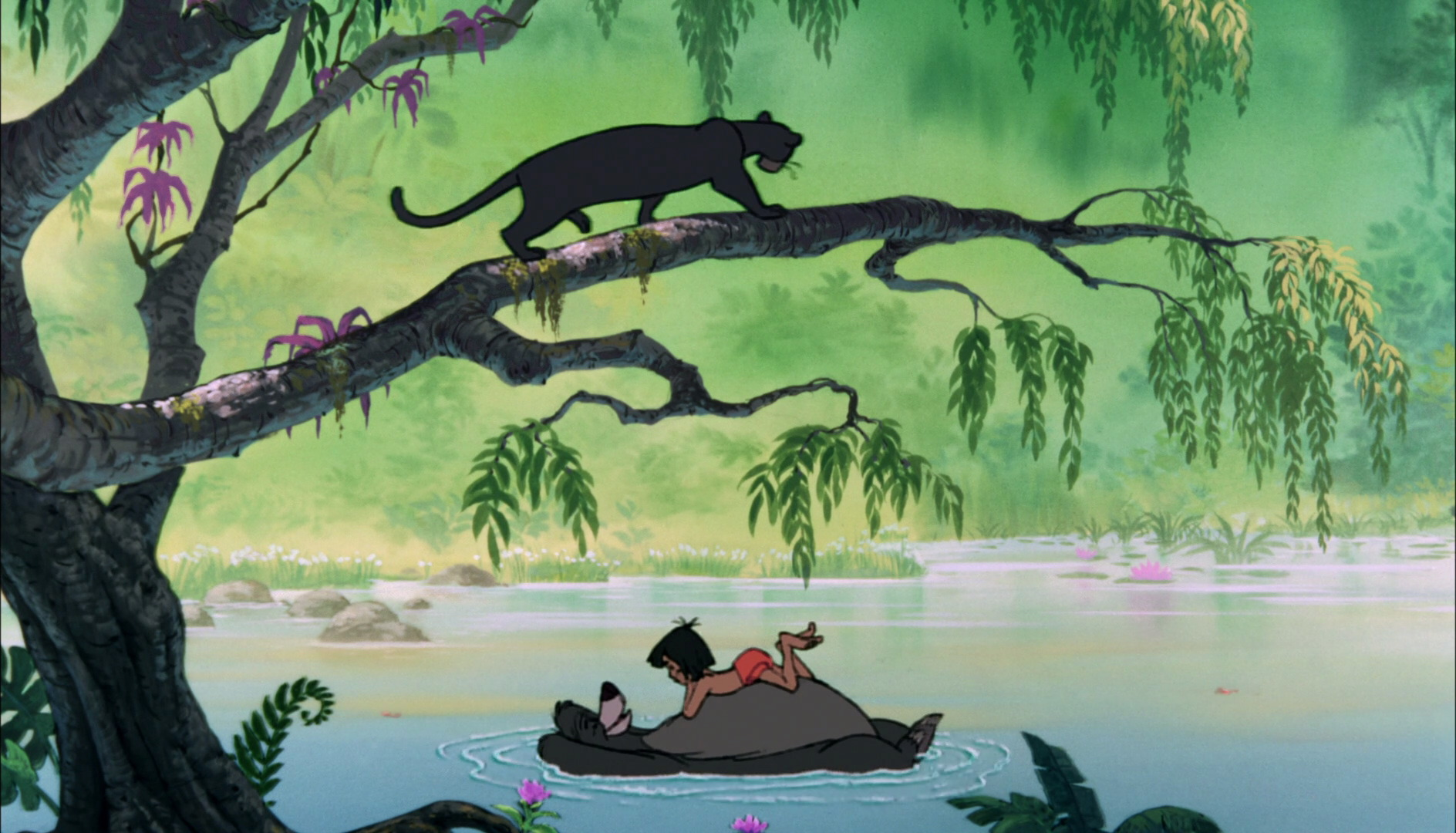 Image Le Livre De La Jungle 02 20something